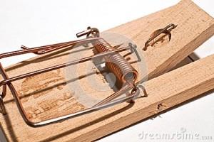 mousetrap-close-up-picture-39160553