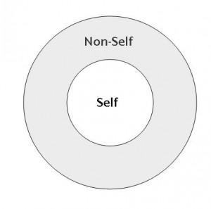 self-and-non-self1-300x297
