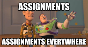 assignment meme