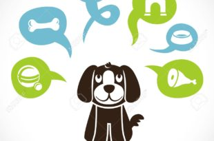 15968817-funny-cartoon-dog-and-his-thoughts-about-food-funny-cartoon-dog-and-his-thoughts-about-food-Stock-Vector