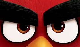 angry bird featured